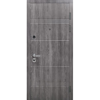 Двери входные БУЛАТ Магнат модель 190-522 Дуб немо карбон/дуб немо серебро