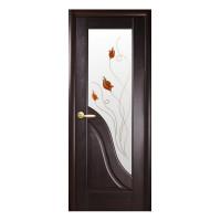 Двері Маестра Амата каштан зі склом сатин і малюнком Р1