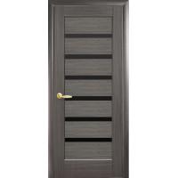 Двері Ностра Линнея grey з чорним склом