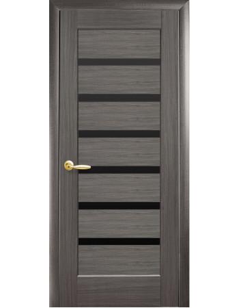 Дверь Ностра Линнея grey с черным стеклом