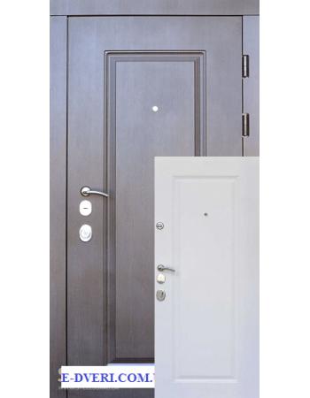 Входные двери Steelguard DP-1