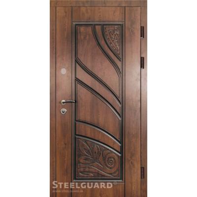 Двері Steelguard Spring (Вулиця)